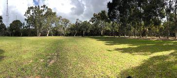 View of the open space area of Alan Anderson park